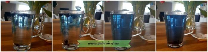 Black Goji Berry Water too hot | Gabriela Green | www.gabriela.green