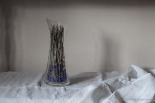 gabrielafineartphotography- on the shelf