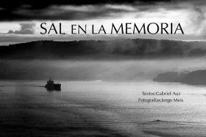 Sal en la memoria