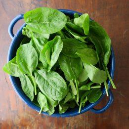 Junger Spinat