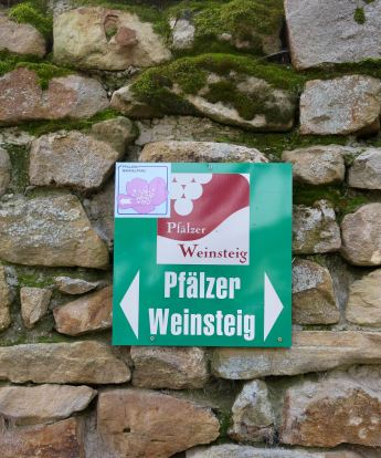 Pfalz_Wachenheim_4