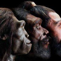 La storia dell'umanità, la felicità e l'intelligenza artificiale