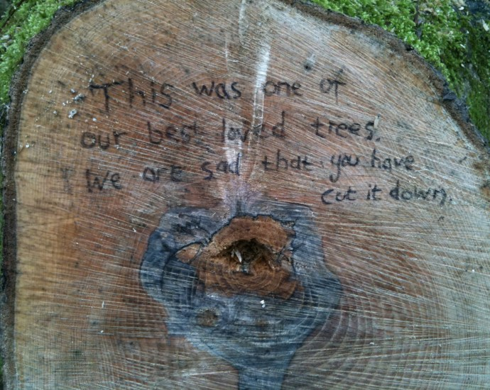 message on an Ash coppice stool