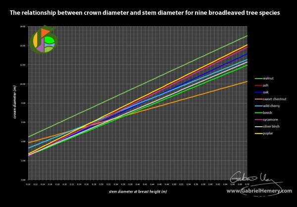 Tree Crown Diameter And Stem Graph Gabriel Hemery