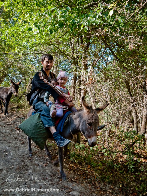Walnut collecting family with donkeys in Kyrgyzstan