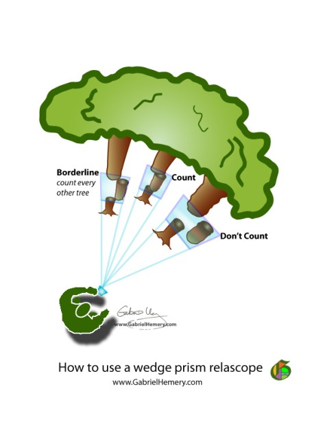 how to use a wedge prism relascope