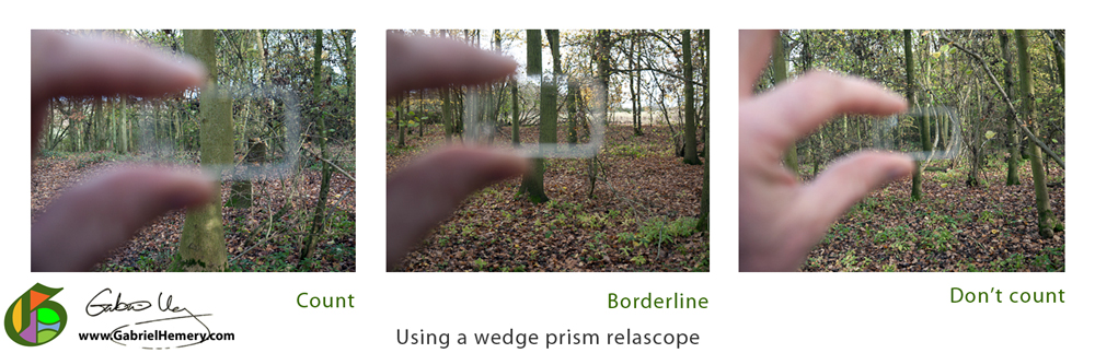 Using a wedge prism relascope