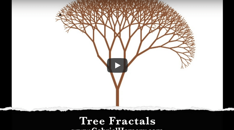 Tree Fractals video