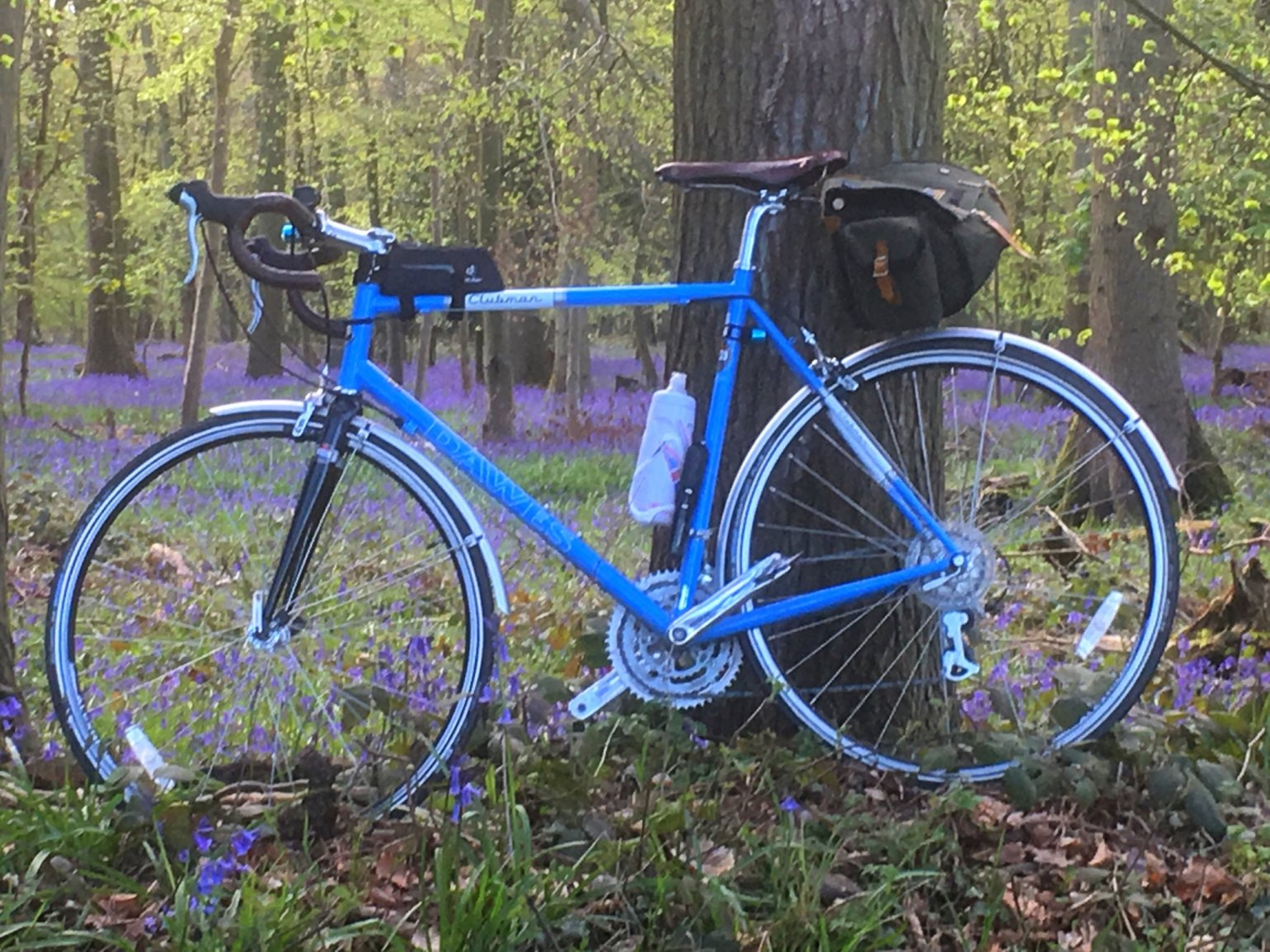 Bike and bluebells