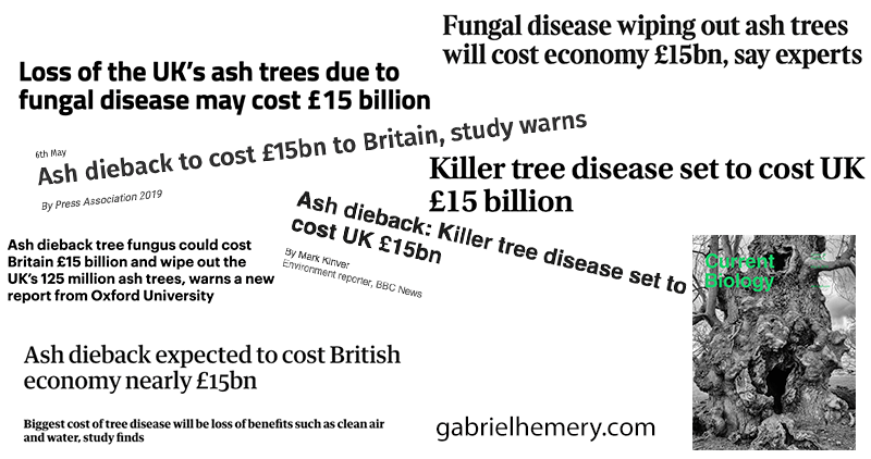 Press coverage of the cost of ash dieback paper, May 2019