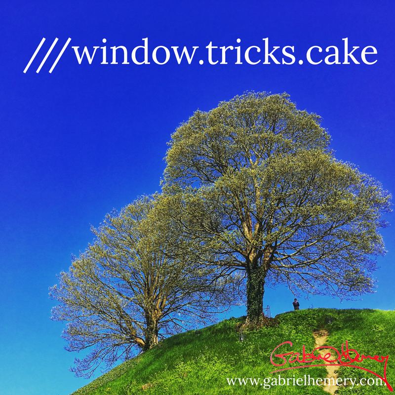 Imagine being able to describe in three words the location of any tree! ///window.tricks.cake