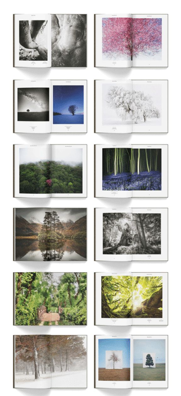 Sample spreads from Trees of the Planet