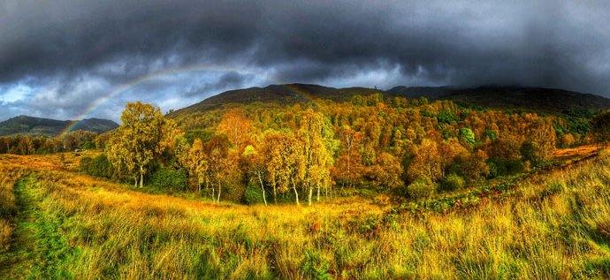 Glen Finglas rainbow treescape Gabriel Hemery