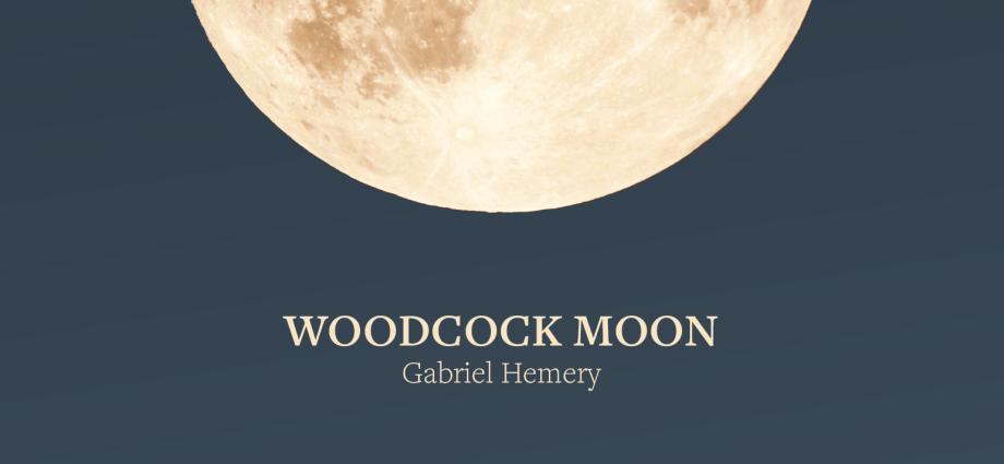 Woodcock Moon