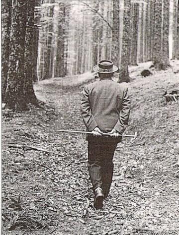Heidegger a Todtnaumberg