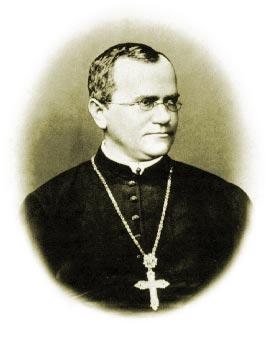 Gregor Mendel (1822 - 1884)