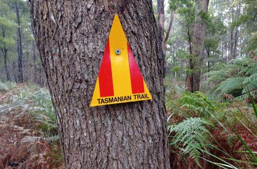 Tasmanian Trail blaze, Gabrielle Kotanidis