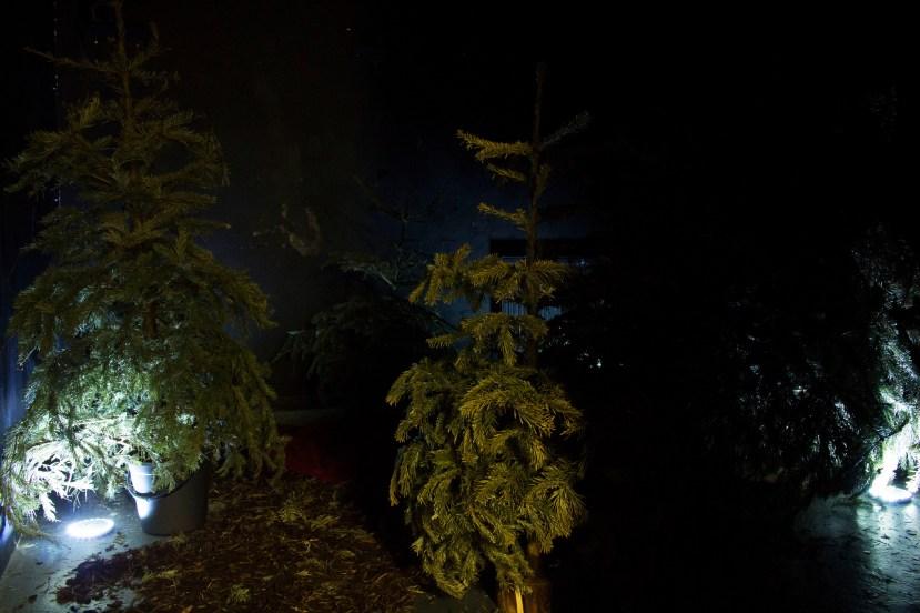 Final installation - lights off, LED lights on