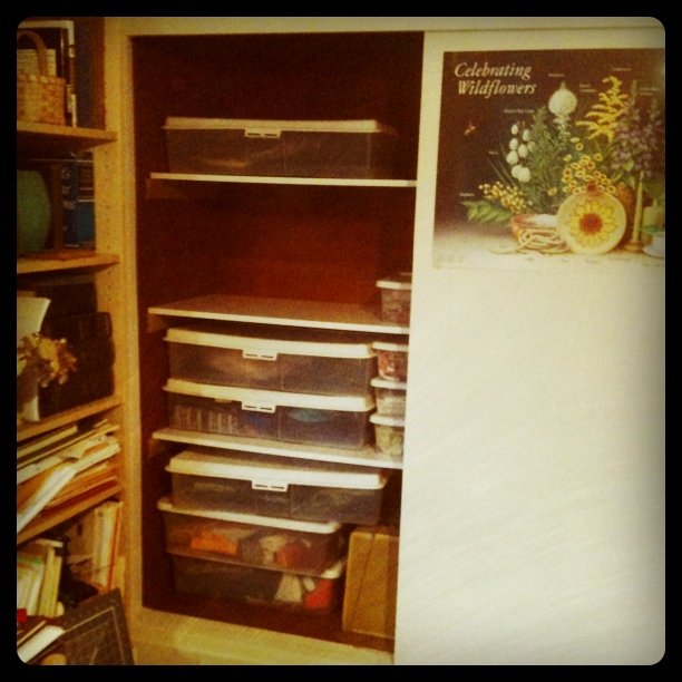 New shelves for Anna Lisa's quilting fabric library
