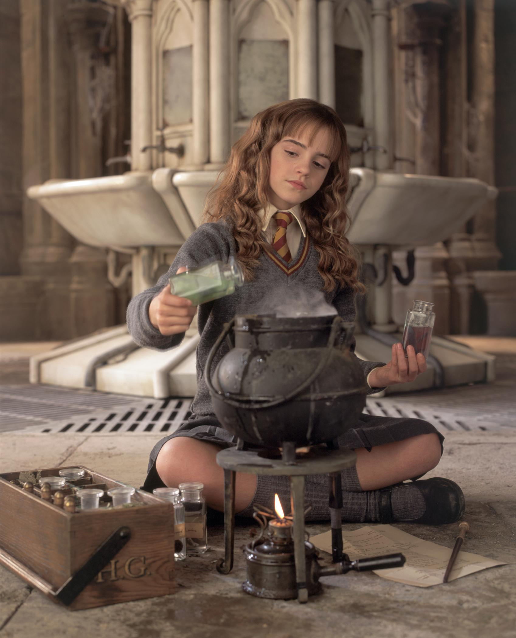 Harry Potter and the Chamber of Secrets movie photo gallery  Gabtors Weblog