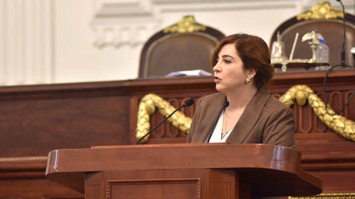 Diputada Gabriela salido solicita informe del programa para integración al desarrollo de las personas con discapacidad del DF