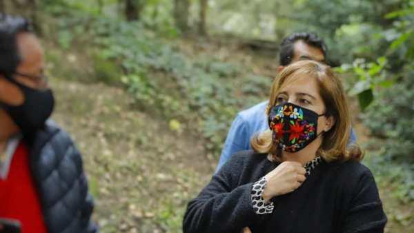 Bosque de Chapultepec, aún en opacidad