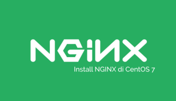Vestacp nginx, php-fpm, pagespeed