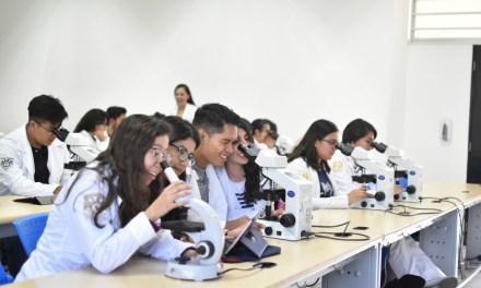 Programas académicos:  Fase I