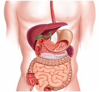 Principales enfermedades Gastroenterológicas en México