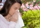 Madrid activa la información de los niveles de polen que más afecta a los alérgicos