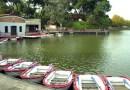 Comienzan las obras de rehabilitación del Lago de la Casa de Campo y su entorno