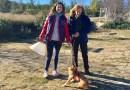 """La Comunidad de Madrid promueve la protección animal con el lema """"Estas navidades, mejor adopta"""""""