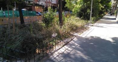 Comienza la reforma del sistema de riego y la ampliación de zonas verdes en el Parque de las Avenidas