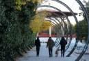 El Pleno de Usera aprueba habilitar un espacio canino en el Parque Pradolongo