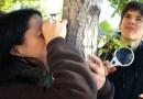 LiquenCity invita a los madrileños a convertirse en científicos por un día en defensa de la biodiversidad