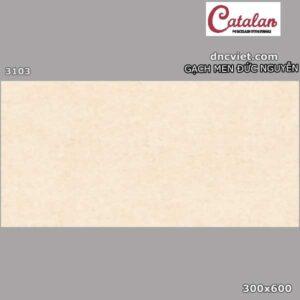 gạch lát nền 30x60 catalan 3103