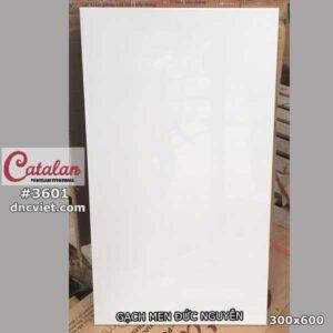 gạch ốp tường 30x60 catalan 3601