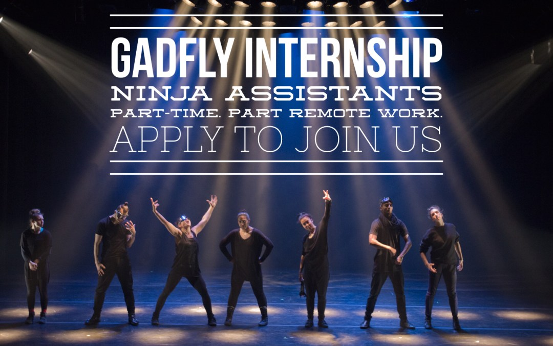We are looking for Ninja assistants – Gadfly Internship