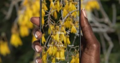 Google's AI Photography app uses crowdsourcing to preserve endangered languages.