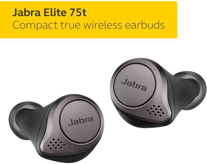 Jabra True Wireless Earbuds