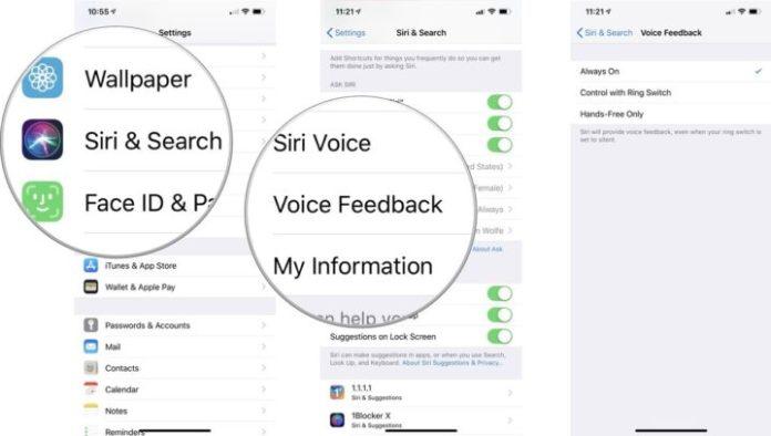 customize Siri voice feedback