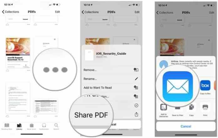 Share a PDF