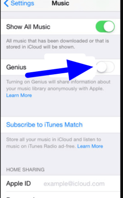 playlists in apple music