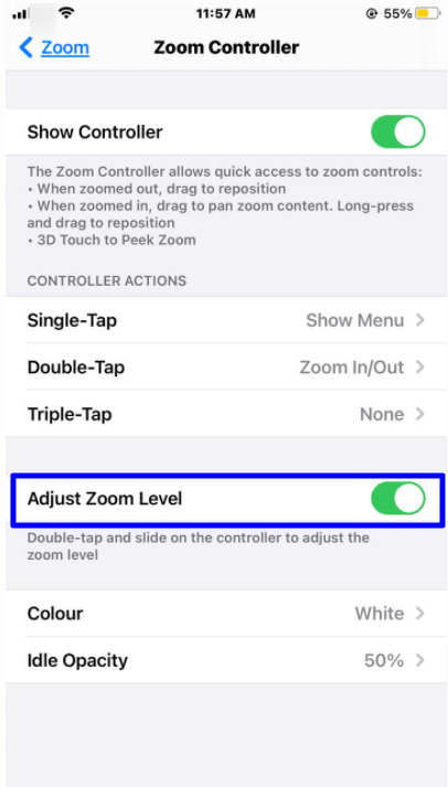 zoom controller adjust zoom level