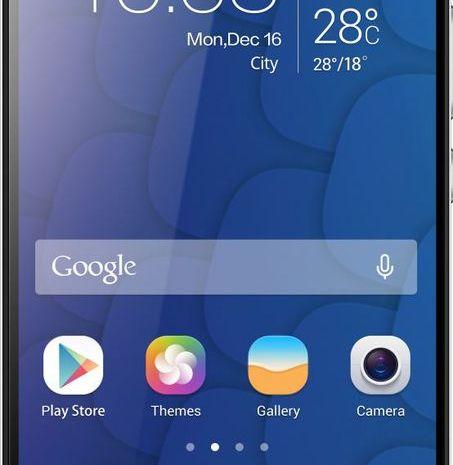 Huawei Honor 6 Plus(N)
