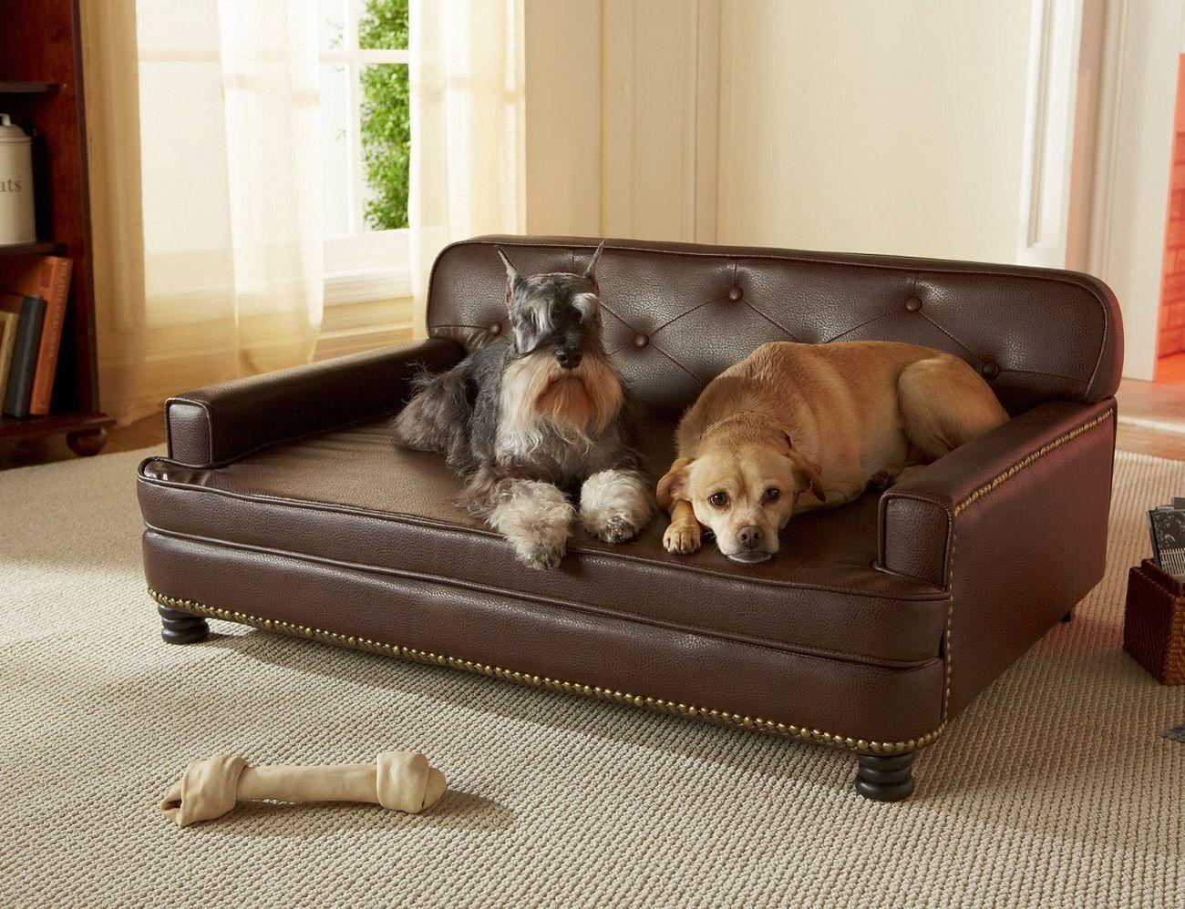 enchanted home mackenzie pet sofa power recliner singapore bed  gadget flow