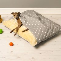 Snuggle Pet Bed by Charley Chau  Gadget Flow