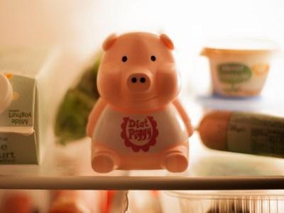 Diät Schwein Vorschau