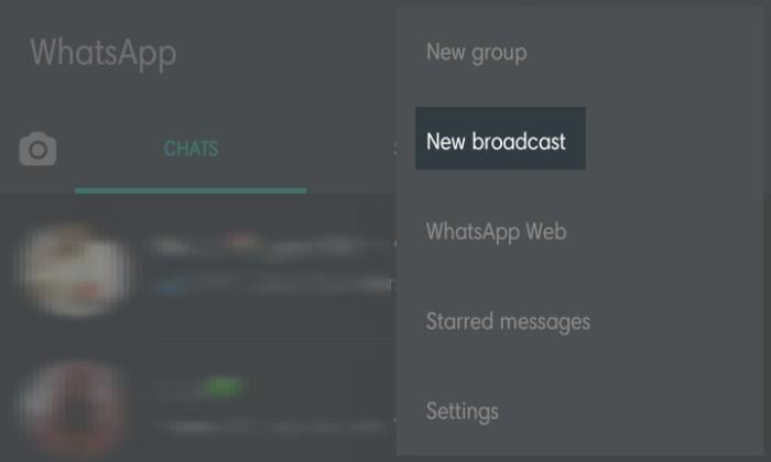 Cara Kirim Broadcast WhatsApp 2