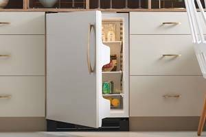 Most expensive undercounter fridge